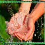 Ortopolifosfato água